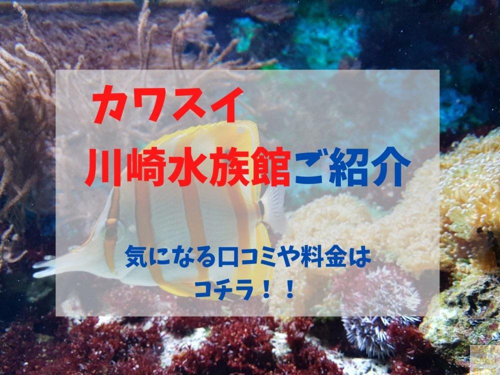 料金 水族館 カワスイ 川崎